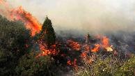 شعلهور شدن آتش در جنگلهای مشجر گیلانغرب/ دشواری مهار آتش به دلیل صعب العبور بودن منطقه