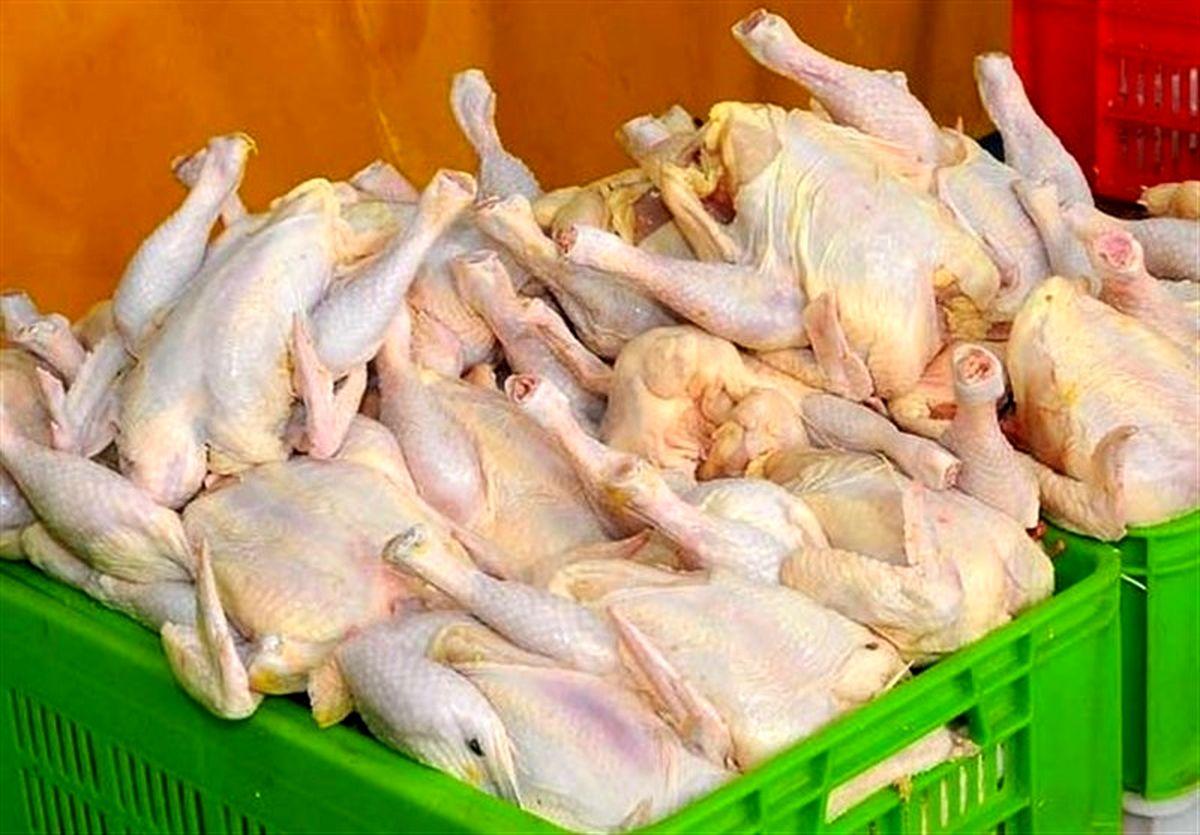 نرخ واقعی مرغ در بازار/ قیمت مرغ چندتومان شد؟