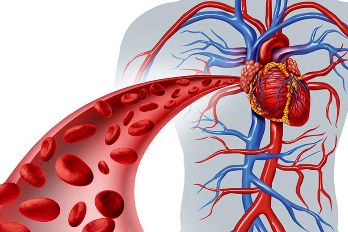 نکته مهم برای نجات جان از فشار خون بالا
