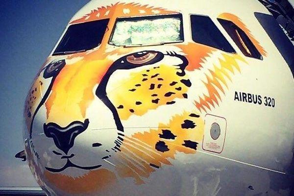 بازگشت یوزایرانی به جام جهانی/فراخوان برای طراحی هواپیمای تیم ملی