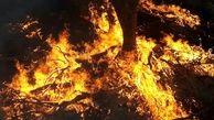 آتش به جان علفزارهای غرب شهرکرد افتاد