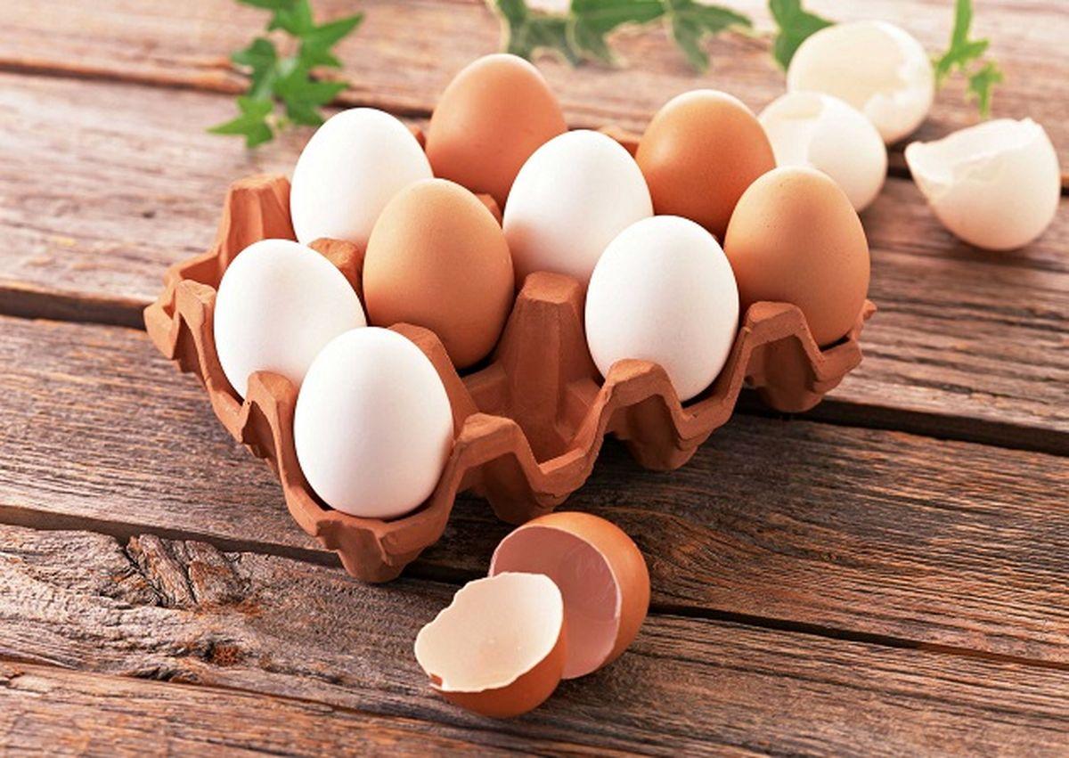 ماجرای واریز یارانه تخم مرغ چیست؟+جزئیات کامل