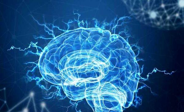 مغز تفاوت روز و شب را چگونه تشخیص میدهد؟