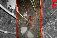 تصویری دردناک از نوزاد رها شده در صالحآباد +عکس