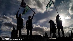 گزارش تصویری/ تظاهرات خونین فعالان محیط زیست