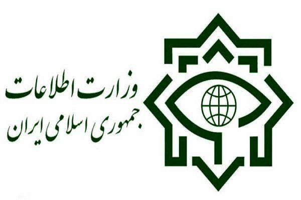 عملیات بزرگ سربازان گمنام امام زمان (عج) در تهران؛ کشف محموله بهداشتی