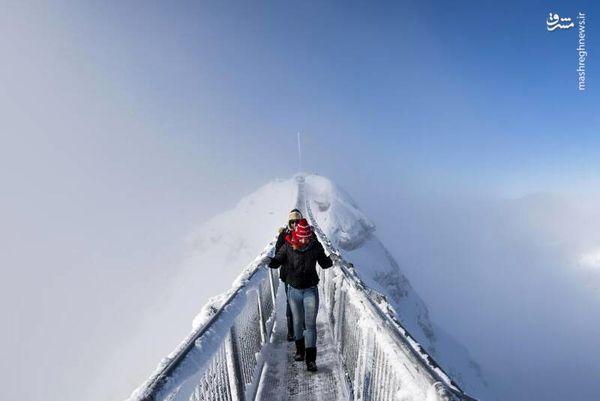 ترسناکترین پل جهان را دیده اید