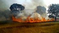 شعله ور شدن مجدد آتش در ارتفاعات باشت